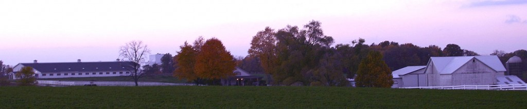 Cherrydale Manor