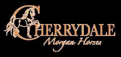 Cherrydale Morgan Horses